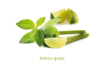 Lemon Grass gross